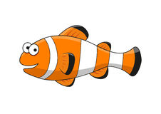 Cartoon tropical clown fish character Royalty Free Stock Images