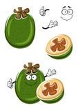 Cartoon tropical feijoa or pineapple guava fruit Royalty Free Stock Photo