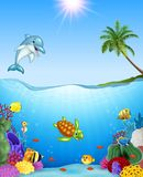 Cartoon tropical fish and beautiful underwater world. Illustration of Cartoon tropical fish and beautiful underwater world Stock Image