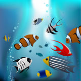 Cartoon tropical fishes Royalty Free Stock Photos