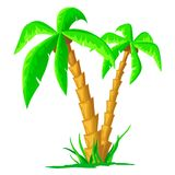 Cartoon tropical palm isolated on white background Royalty Free Stock Photos