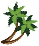 Two cartoon palms Stock Photos