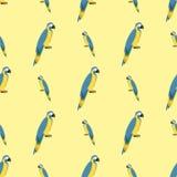 Cartoon tropical parrot wild animal bird seamless pattern vector illustration wildlife feather zoo color nature vivid. Royalty Free Stock Image
