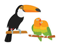 Cartoon tropical parrot wild animal bird vector illustration. Royalty Free Stock Image