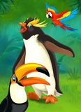 Cartoon tropical or safari - illustration for the children Stock Photo