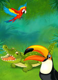 Cartoon tropical or safari - illustration for the children Stock Image