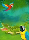 Cartoon tropical or safari - illustration for the children Royalty Free Stock Images