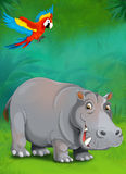 Cartoon tropical or safari - illustration for the children Royalty Free Stock Image