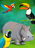 Cartoon tropical or safari - illustration for the children Stock Photography