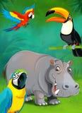 Cartoon tropical or safari - illustration for the children Stock Photography