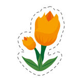 cartoon tulip flower image Royalty Free Stock Images