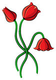 Cartoon tulips flowers Royalty Free Stock Image