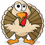 Cartoon turkey Stock Photography