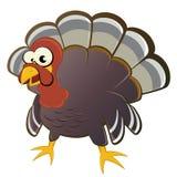 Cartoon turkey Royalty Free Stock Photo