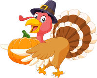 Cartoon turkey holding a pumpkin Stock Image