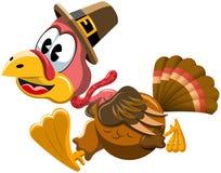 Cartoon turkey in a hurry isolated Stock Photos