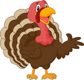 Cartoon turkey presenting Royalty Free Stock Photography