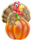 Cartoon Turkey and Pumpkin Royalty Free Stock Photos