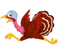 Cartoon turkey running Stock Photos