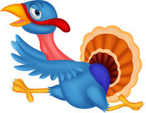 Cartoon turkey running Stock Image