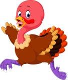 Cartoon turkey running Royalty Free Stock Images