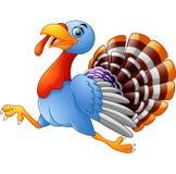 Cartoon turkey running Royalty Free Stock Photography