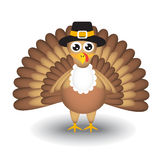 Cartoon turkey Royalty Free Stock Photography