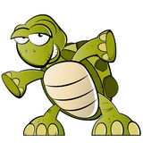 Cartoon turtle. Illustration of green cartoon turtle, isolated on white background Royalty Free Stock Photo