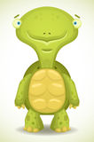 Cartoon Turtle Stock Image