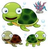 Cartoon turtle. Illustration of Cartoon turtle set Royalty Free Stock Photo