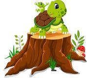 Cartoon turtle and frog posing. On tree stump stock illustration