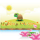 Cartoon turtle on green grass Stock Photography