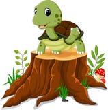 Cartoon turtle posing. On tree stump royalty free illustration