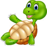 Cartoon turtle relaxing isolated on white background Stock Photos
