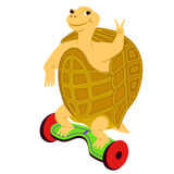 Cartoon turtle riding on the electric scooter. Stock Images