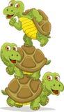 Cartoon Turtle Teamwork Stock Photography