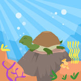 Cartoon Turtle Underwater Deep Ocean Bottom Coral Stock Photo
