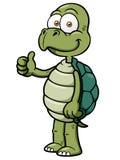 Cartoon turtle. Vector illustration of Cartoon turtle Stock Images