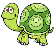 Cartoon turtle. Vector illustration of Cartoon turtle Royalty Free Stock Image