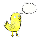 Cartoon tweeting bird with thought bubble Stock Images