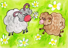 Cartoon of Two Sheep in a Field. A cartoon of a male and female sheep looking at each other in a field of daisies Royalty Free Stock Photos
