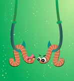 cartoon two worms vector illustration