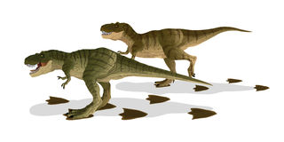 Cartoon Tyrannosaurus(T-rex) Royalty Free Stock Image