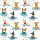 Cartoon vector character french bulldog seamless pattern. Stock Images
