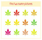 Cartoon Vector Illustration of Finding Two Exactly the Same Pictures Educational Activity for Preschool Children with. Leaves of the tree Stock Photos