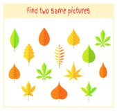 Cartoon Vector Illustration of Finding Two Exactly the Same Pictures Educational Activity for Preschool Children with. Leaves of the tree Royalty Free Stock Image