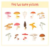 Cartoon Vector Illustration of Finding Two Exactly the Same Pictures Educational Activity for Preschool Children with. Mushrooms Stock Photo