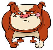 Bulldog dog cartoon animal character stock illustration
