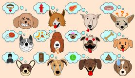 Cartoon Vector Illustration of Funny Dogs Expressing Emotions. Funny Mixed Breed dogs with Speech Bubble. Dog Brain Thinking. stock illustration