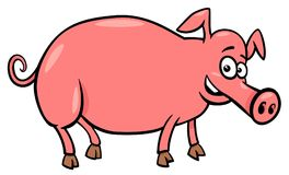 Pig farm animal character cartoon illustration. Cartoon Vector Illustration of Funny Pig Farm Animal Character Stock Image